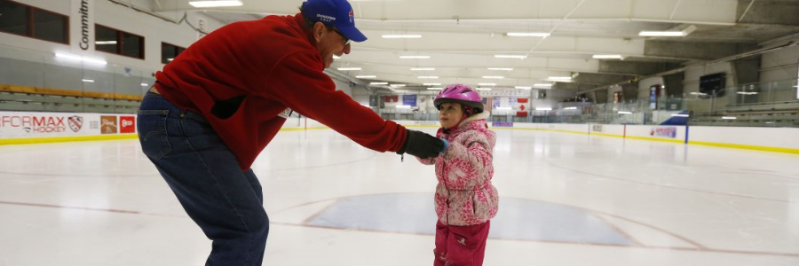 Should Amherst privatize its Northtown Center ice rinks complex or expand it?